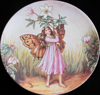 The Windflower Fairy
